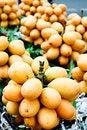 Free Baby Mangoes Stock Image - 19006471
