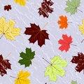 Free Autumn Seamless Grunge Pattern Royalty Free Stock Photography - 19008687