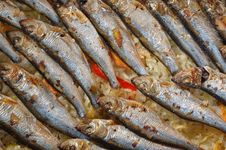Free Roasted Sardines Royalty Free Stock Images - 19004639