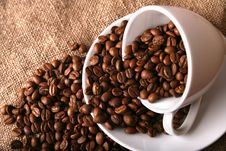 Free Cup, Dish And Offee Royalty Free Stock Photography - 19006787
