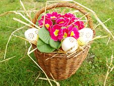 Free Easter Eggs Stock Photo - 19007050