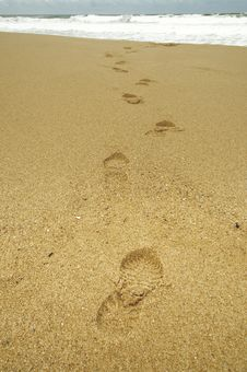 Free Footprints Stock Image - 19007941
