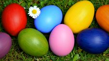 Colorful Easter Eggs With Daisy Royalty Free Stock Photos