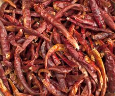 Free Dried Red Hot Chili Royalty Free Stock Image - 19015606