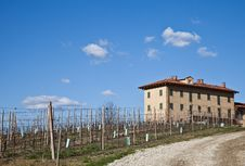 Italian Villa With Vineyard: Spring Season Stock Images