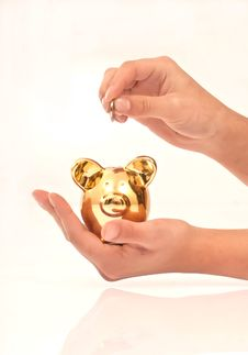 Free Hands Holding Piggy Bank Royalty Free Stock Image - 19018876