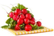 Bunch Of Radish. Royalty Free Stock Images