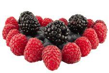 Free Berries Stock Image - 19023561