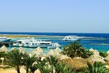 Beach On The Red Sea Royalty Free Stock Images
