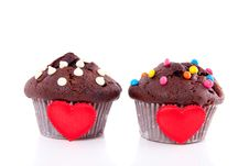 Free Two Lovely Chocolate Muffins Royalty Free Stock Photo - 19028675