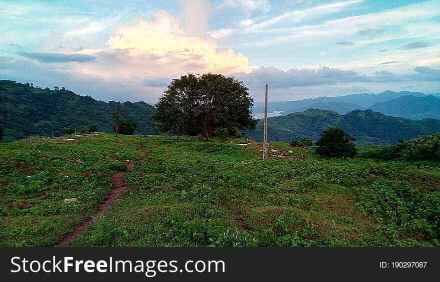 Beautiful natural Landscape with tree & Clouds