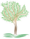Free Stylized Tree Stock Photos - 19036423