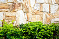 Free Textured Stone Wall And Plants Stock Photo - 19039450
