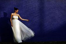 Free Beautiful Young Bride Stock Photos - 19030083