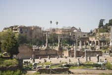 Free Rome, Forum Royalty Free Stock Photo - 19030695