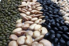 Free Various Beans Close Up Royalty Free Stock Photo - 19033135