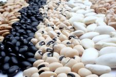 Various Beans Close Up Royalty Free Stock Image