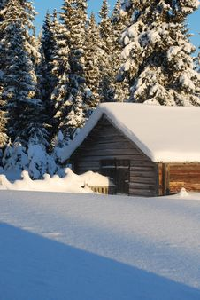 Free Small House In Winter Wood Royalty Free Stock Photo - 19034945