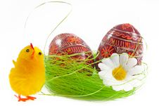 Easter Chick And Egg Royalty Free Stock Photo