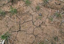 Free Dry Soil Royalty Free Stock Photos - 19036888
