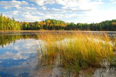 Free Algonquin Park, Canada Royalty Free Stock Images - 19039599