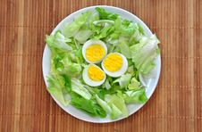 Free Eggs And Lettuce Stock Photography - 19040072