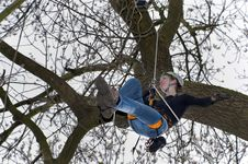 Free Young Woman Climbs A Tree Royalty Free Stock Photos - 19040938