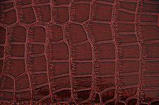 Imitation Of Crocodile Leather Texture Stock Photos