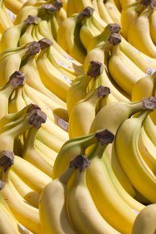 Free Bananas Royalty Free Stock Image - 19043606