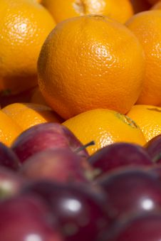 Free Oranges Royalty Free Stock Photography - 19043787