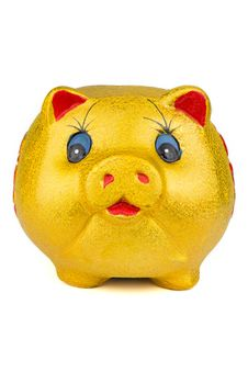 Free Piggy Bank Stock Photography - 19043982