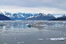 Free Floating Ice Stock Photo - 19044090