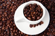 Cup Full Of Coffee Beans Stock Image