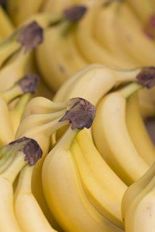 Free Bananas Royalty Free Stock Images - 19045449