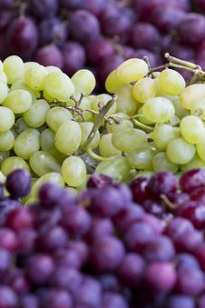 Free Grapes Stock Images - 19045594