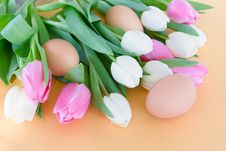 Free Tulips And Eggs - Eastertime Stock Photos - 19048353