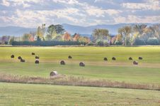 Free Hay Field In The Fall Stock Photo - 19048470