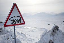 Free Roadsign With Polar Bear Stock Photography - 19049802
