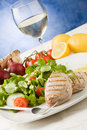 Free Grilled Tuna Steak With Salad Stock Images - 19051714