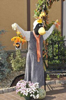 Free Scarecrow Stock Photo - 19050300