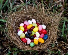 Free Jelly Bean Nest Royalty Free Stock Image - 19050426