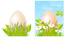 Free Easter Big Egg On Grass Stock Photography - 19054322