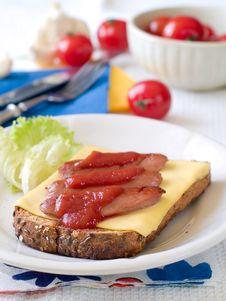 Free Sandwich Stock Photos - 19059603