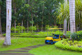 Free Golf Cart On Path, Pretty Green Grass Royalty Free Stock Photos - 19065168
