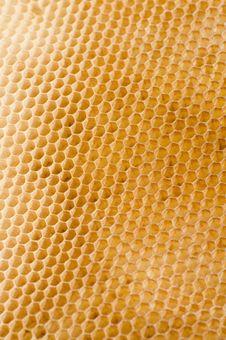 Free Honeycomb Royalty Free Stock Image - 19062556