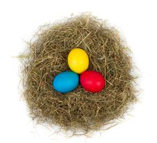 Free Easter Eggs Stock Photography - 19064472