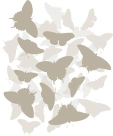 Free Tonal Butterfly Design Stock Photography - 19065092