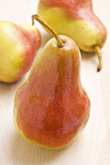 Free Ripe Pear In Autumn Colors Royalty Free Stock Photography - 19066337