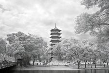 Free Chinese Garden Pagoda Royalty Free Stock Images - 19066809
