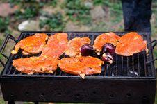 Barbecue In Open Air Stock Photos